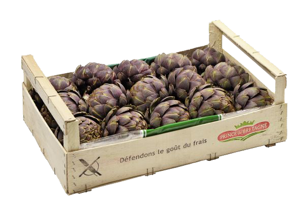 Artichaut Cardinal legumes primeur - Accueil
