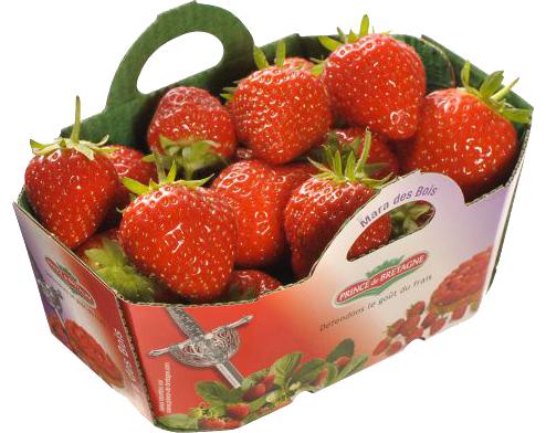 Fraises Mara des Bois fruits primeur - Accueil